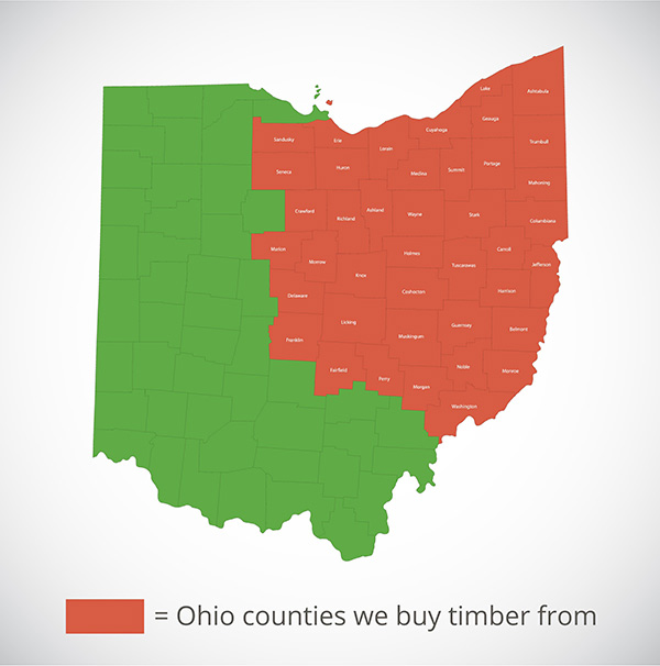sell timber in these Ohio counties