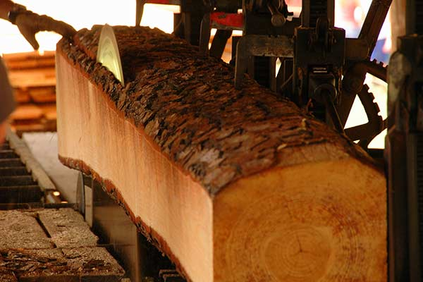 Lumber Mill and Millwork Services